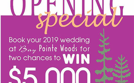 Bay Pointe Wedding Promo
