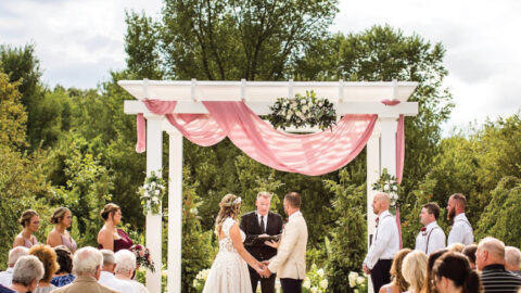 A phot of a couple saying their vows during a Michigan wedding.