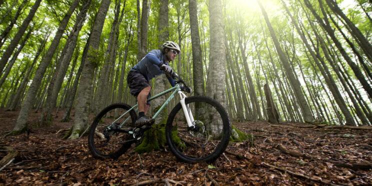 An image of someone cycling on Michigan bike trails.